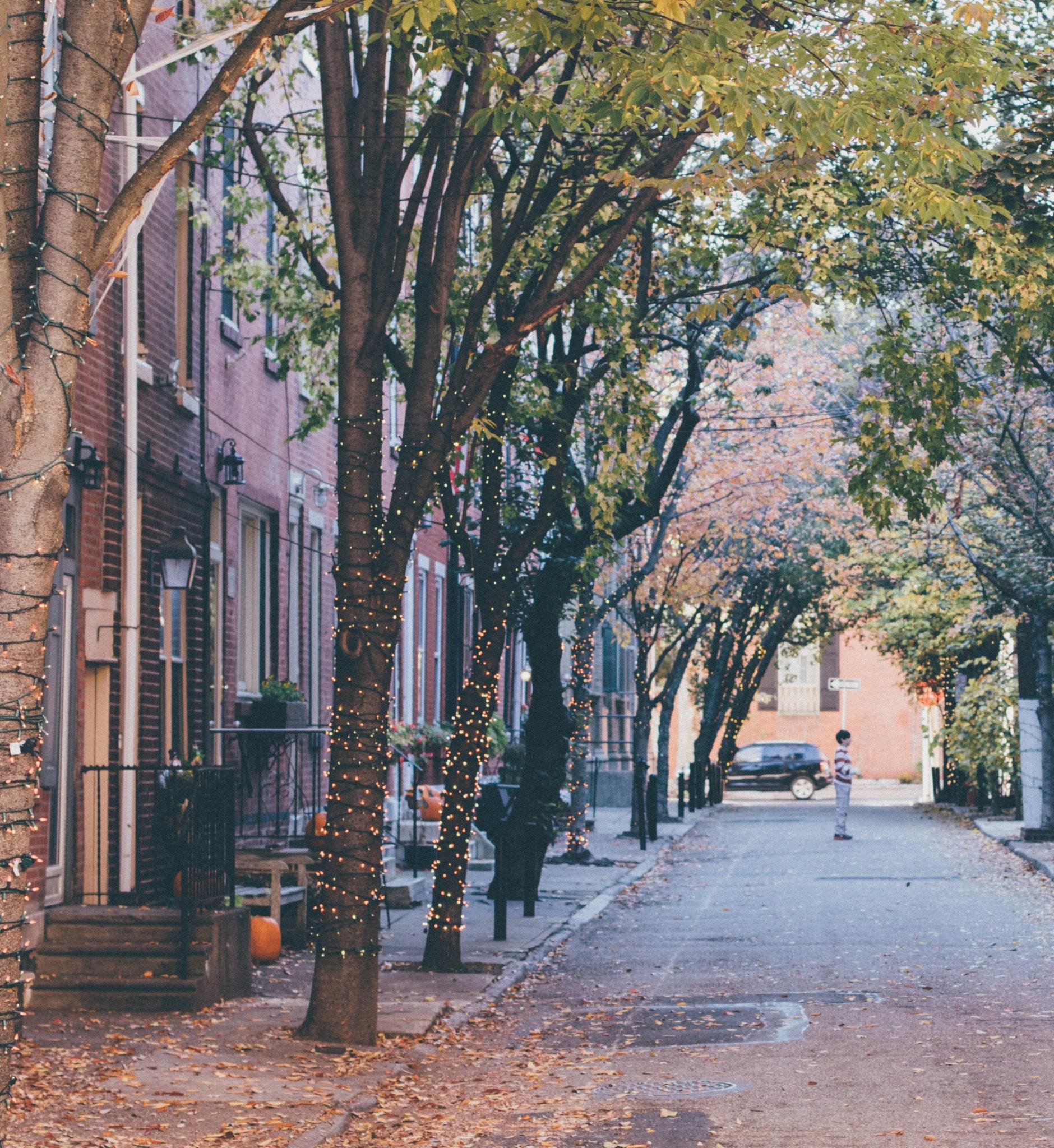 A quaint neighborhood street in Philadelphia.